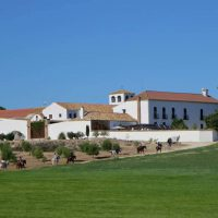 Large Stately 16th Century renovated Cortijo/Country Estate, Horse Heaven!